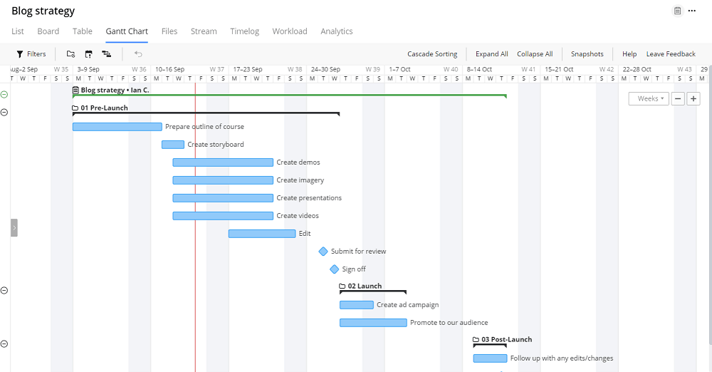 Gantt chart - Wrike Review: How to use Wrike for Managing your Marketing Projects
