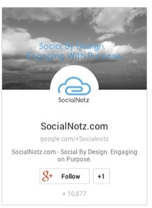 Google Plus Follow